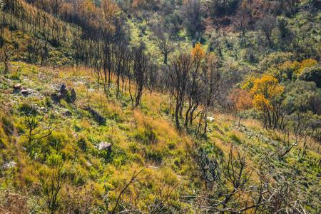 Mountain landscape in inner Mani on Peloponnese in Greece