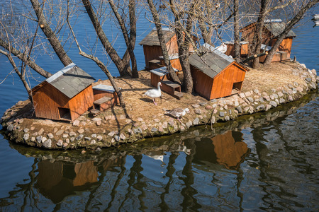 Image of wooden houses for mandarin ducks on the pond Stock Photo