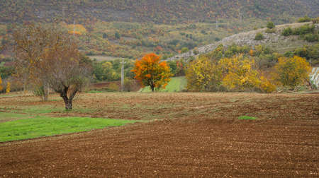 Autumn colors of landscape in mountains of Abruzzo in Italy Stock Photo