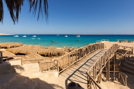 view from restaurant to the beach of Mahmya island with palm tree Reklamní fotografie