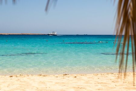 view from beach of Mahmya island with palm tree and yacht sliding along