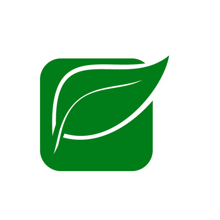 Eco Nature Green Leaf Icon