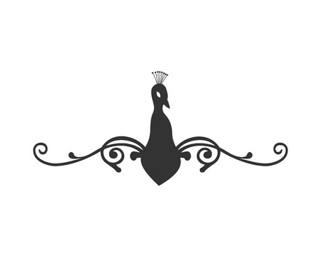 Black Peacock Flat Vector