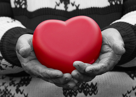 hands holding heart: Closeup, cropped, black white image, hands senior, elderly woman, grandmother holding red heart in hands, isolated. Human emotions, attitude. Old people health. Love, compassion, mother, parent