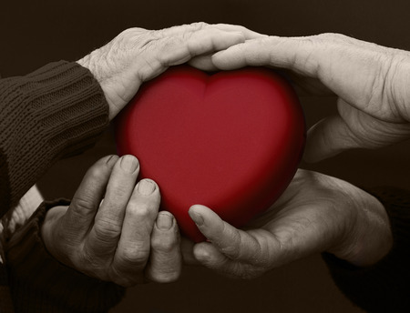 empatia: Primer plano, cortado, aislado negro foto blanco, las manos de alto nivel, las personas mayores, mujer, hombre, abuelos sosteniendo el corazón rojo. Las emociones humanas, actitud. Las personas mayores de salud. El amor, la compasión, la madre, el padre
