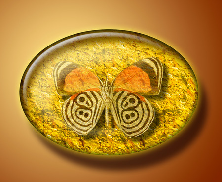 artifact: Illustration of  butterfly in succinct, amber stone. Archeological artifact, specimen, discovery.