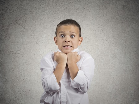 aggravated: Closeup portrait angry child boy about to have nervous atomic breakdown very displeased isolated grey wall background. Negative human emotions facial expression feeling attitude body language conflict Stock Photo