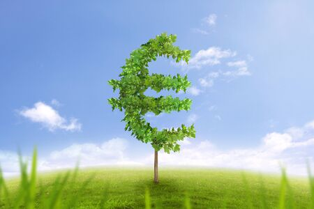 financial growth: Financial growth and success on green summer natural green grass landscape with single trees in the shape of euro money sign showing business concept of growing prosperity and investments return Stock Photo
