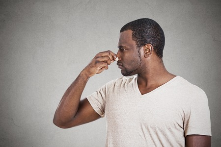 fart: Closeup side profile portrait of man with disgust on face pinches his nose something stinks bad smell situation isolated grey background. Negative emotion facial expression, perception body language