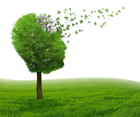 Brain disease with memory loss due to Dementia and Alzheimer's illness as medical icon of a tree shaped as human head and brain losing leaves as concept of intelligence decline.