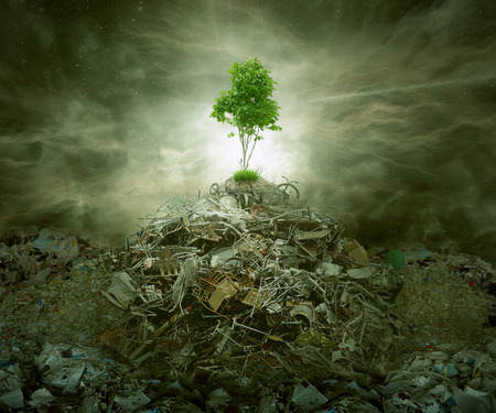 management concept: Green concept as a leaf tree on top of mountain heap of garbage with roots as an environment or conservation icon for waste management or new healthy beginning.