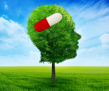 Tree in a shape of side profile human head with pill. Treatment remedy of neurological psychological problems healthcare concept