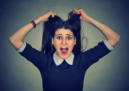 pissed off: Stress. Woman stressed is going crazy pulling her hair in frustration. Closeup of young pissed off businesswoman isolated on gray background. Stock Photo