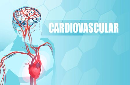 Schematic Illustration of the human circulatory vascular system, heart anatomy and brain blood supply
