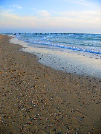 strand bedekt met zee schelpen