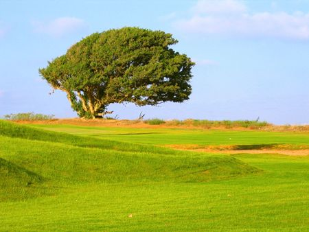 pastoral landscape Stock Photo