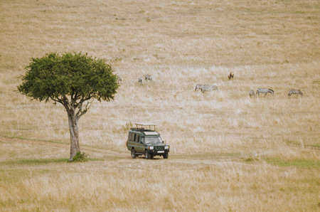 game reserve: An all terrain vehicle on a road in the Masai Mara game reserve in Kenya  Some zebra in the background