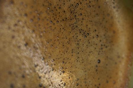 Macro close-up of freshly brewed coffee
