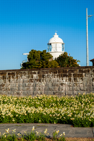 Ashinozaki lighthouse of blue sky and narcissus in full bloom Stock Photo