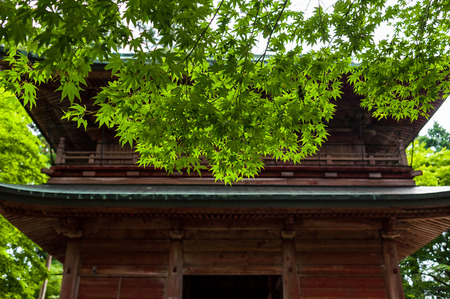 Mount Hiei, a leaf in front of the Enryaku-ji Temple gate 스톡 콘텐츠