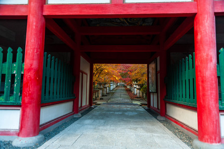 Autumn leaves over the red gate Editorial
