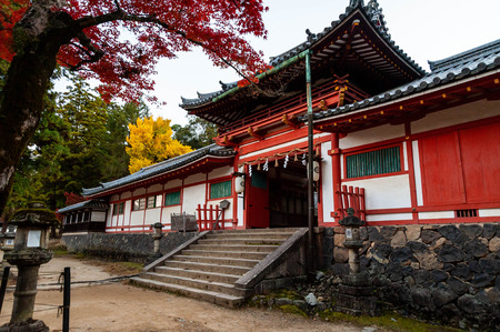 Autumn leaves and ginkgo of Tamukeyama Hachimangu Shrine 写真素材 - 122071284