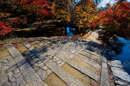 Autumn leaves and stone steps of Entsu-ji Temple