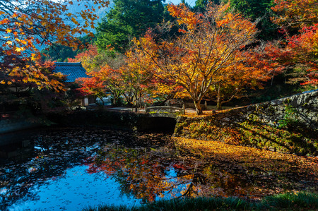 Autumn leaves reflected in pond of Entsuji Temple
