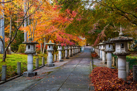 Beautifully lined lanterns and colored leaves
