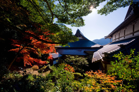 Japanese-style scene with colored leaves and roof