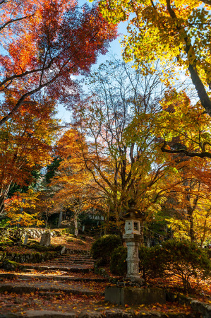 Autumnal stone steps and lanterns