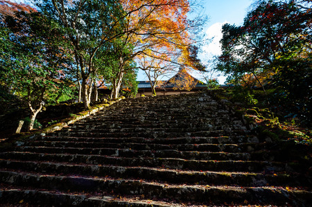 Old gate and stone steps under autumn leaves Banco de Imagens