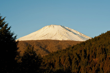 Mt. Fuji with snow and forest without snow Reklamní fotografie