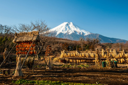 Snowy Mount Fuji and Japanese Rural Landscape Stock Photo
