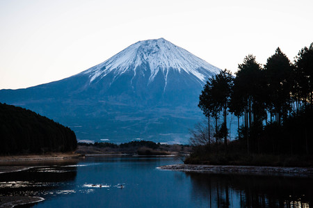 Lake Honjo and magnificent of beautiful tree