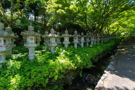 Fresh green and regularly arranged stone lanterns Banco de Imagens