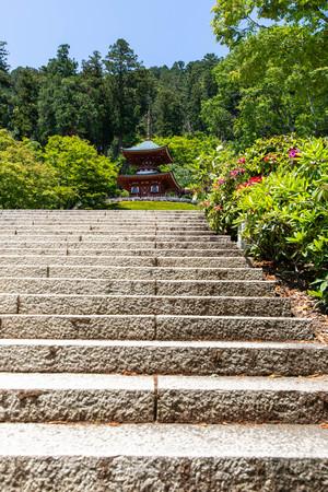 Temple buildings and large stone steps Banco de Imagens