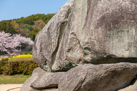 Megalithic structures and cherry blossoms and rape blossoms