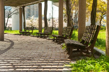 Lined benches and sun shadows