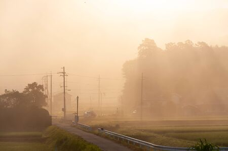 Power pole and wire and road in morning sun Imagens