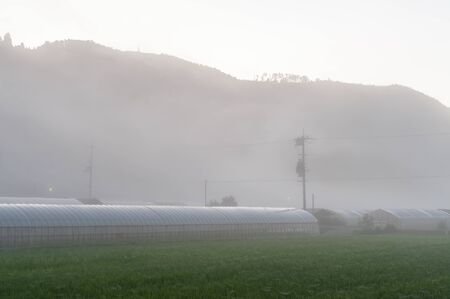 Morning mist that occurred in a rural area of Kyoto