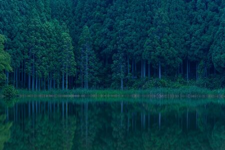 Quiet lake in the forest before sunrise