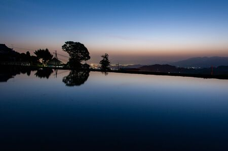 Dawn sky and trees reflected in paddy field