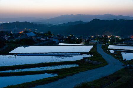Dawn sky reflected in paddy field Stock fotó