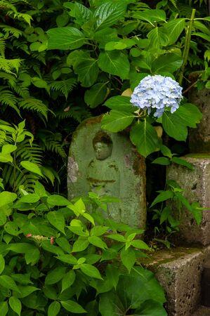 Stone Buddha statue and one hydrangea flower 写真素材
