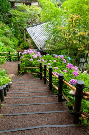 Japanese roof, steep stairs and hydrangea