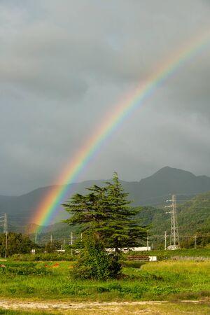 Rainbow in Shiga's rural area