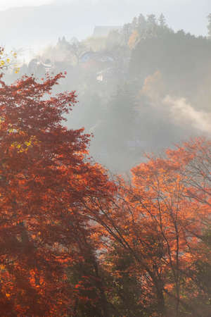 Beautiful mountain foliage in the morning mist