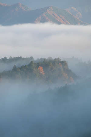 Autumn colored mountains emerging from the morning mist