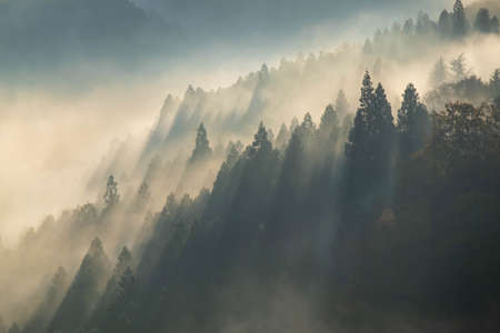 Morning mist and glow in the mountainous region